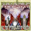 PALACE IN THUNDERLAND - In The Afterglow of Unity (2015) CDdigi